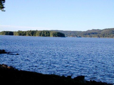 MISTENKELIG OBSERVASJON: Helsehuset kan ikke bekrefte at det er alger i Rødenessjøen, men anser det som sannsynlig. Mandag starter de siste runde med badevannsprøver på kommunale badeplasser. Arkivfoto