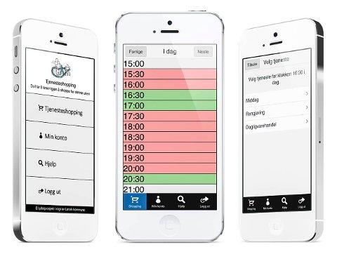 tastetrykk unna: Med appen kan brukerne bestille tjenester ved noen enkle tastetrykk på mobilen. Fire brukere har allerede testet ut piloten.Foto: Larvik kommune
