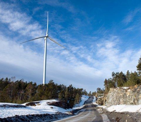43 vindmøller kan bli en realitet i Vestfjella i Aremark, 11 færre enn ved forrige prosjekt. Bildet er fra vindparken i Töftedal på svensk. Arkivfoto: Anders Johansson