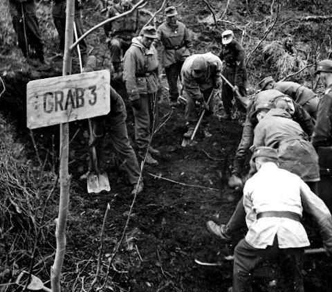 Sjokkerende: Kommisjonen gravde opp fire massegraver rundt Mallnitz-leiren. De fant 143 lik.