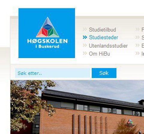 Ny nettsatsing Høgskolen i Buskerud Hønefoss satser nytt på sine nettsider.