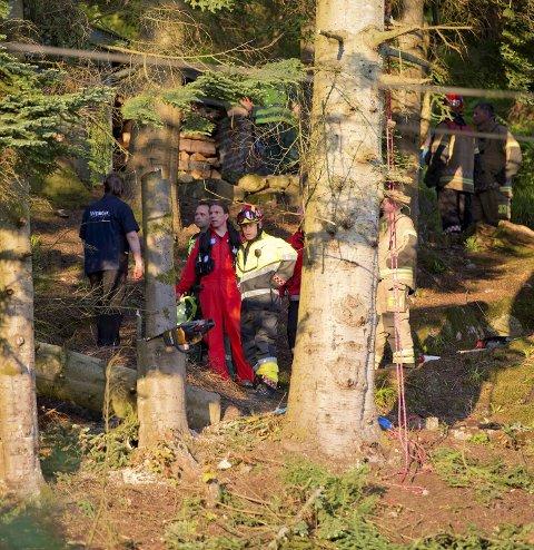 Motorsagen står igjen i treet. Treet som er felt er litt lenger oppe i bakken bak mannskapene.