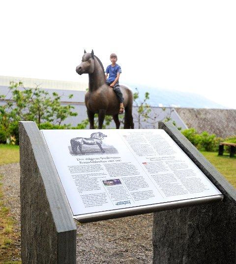 Forslag til bildetekst: Informasjonstavla er på plass. Sondre Brusdal Havre (10) er på ferie i Rosendal og likte seg som rytter på Rosendalsborken. (Foto: Bjarne Øymyr)