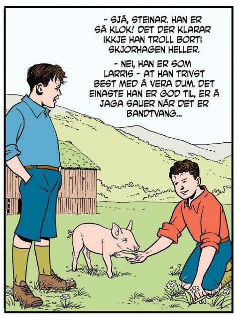 På Vangen har de fått tak i en liten grisunge, som etter planen skal bli julemat.