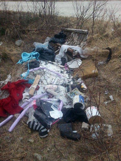 SAMLET: All søpla ligger samlet i en dunge. Hadde tingene ramlet av i fart, ville de ligget strødd langs veien, ifølge fotografen.