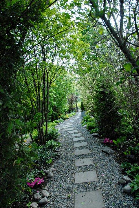 Tidkrevende: Singelgangene er transportert til den fem mål store hagen via ei trillebår.