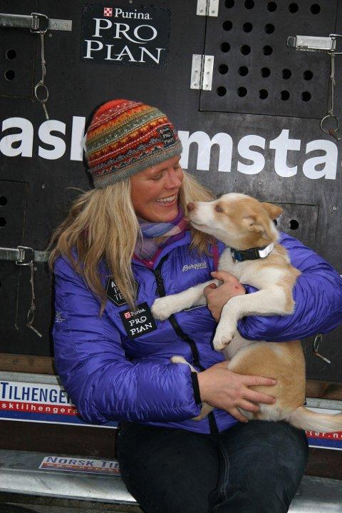 AVLER OPP NYE HUNDER: Denne livlige krabaten heter Nieida (som betyr jente på samisk), og er en av mange nye håpefulle til Nina Skramstads framtidige hundespann.