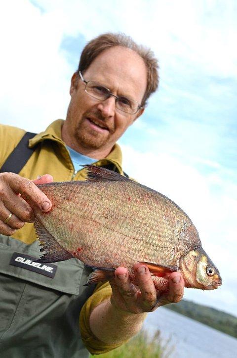 Thrond Hagen viser fram en brasme, en av de andre karpefiskene som er funnet i Østensjøvann. Den høye ryggen gjør at gjedda har vanskelig for å bite over fisken, forklarer han.