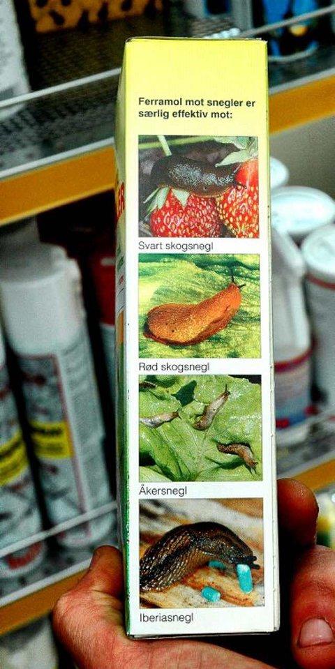 Anti-snegle: Det er selvfølgelig ikke bare mordersneglen noen av midlene virker på - andre sneglearter ligger også dårlig an. Nemaslug vriker derimot kun på Iberiasneglen og åkersnegler.