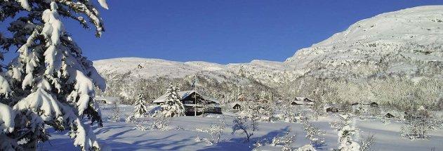 Nydelig på Kvamskogen søndag. Her med Byrkjefjell i bakgrunnen.