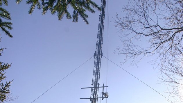 Fra denne masten i et skogbryn bak Leland kommer mobilsignaler til en del av selskapets kunder i kommunen. Nå skiftes basestasjonen ut for å være rustet til en forventet 15-dobling av mobiltrafikken (hovedsakelig mobil nettrafikk) innen fire år.
