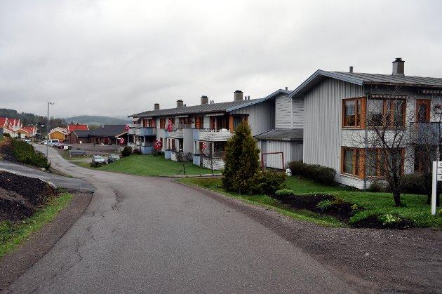 GOD MORGEN: Boligene i Nittedal var klare med Norgesflagget tidlig mandagsmorgen. (Alle foto: Usman Muhammad Chaudhry)
