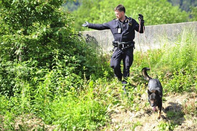 Politiet jaktet på taggere på Florida og Nygård (13.06.2011).