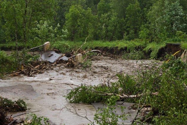 BRU: Dette var ei gang en bru, men nå ligger den under vann omkranset av trær, gjørme og stein.