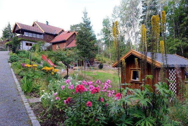 HAGE1: Brita og Magne Taanevigs hage i Holmestrand. For å stemme via sms på denne spennende hagen, send TB HAGE 1 til 2303. Meldingen koster 7 kroner. Foto: Rebekka Westgaard