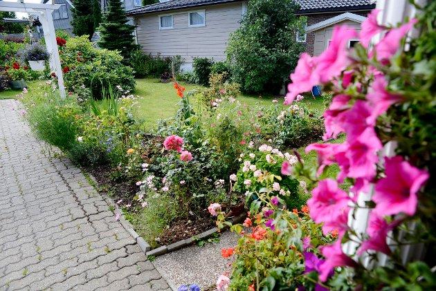 HAGE2: Solveig Madsen har denne vakre hagen i Horten. Synes du denne er Vestfolds vakreste, og ønsker å stemme den fram, send TB HAGE 2 til 2303. Hver stemme koster 7 kroner. Foto: Rebekka Westgaard