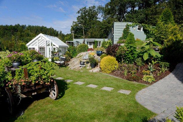 HAGE4: Bjørg Fagervold og Sven Petterson i Sandefjord har denne vakre hagen. For å stemme på denne hagen via sms, send TB HAGE4 til 2303.  Hver sms koster 7 kroner. Foto: Rebekka Westgaard