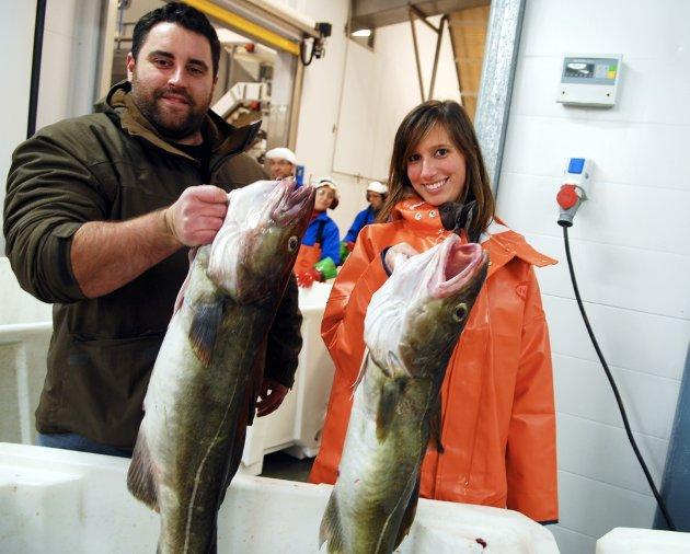 Inspektør Adérito Santos og veterinær Mafalda Senos fra portugisiske Rui Costa konstaterer at torsken er stor og fin.