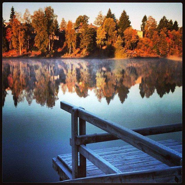 LANGVANNET: #langevann #landscape #lake #lørenskog #norway #nature #mist #morgning #fall #frost #sun #skog #sol #autumn #landskap #høst #tåke #trees #natur#trær #earlymorning. Foto: estaurnes
