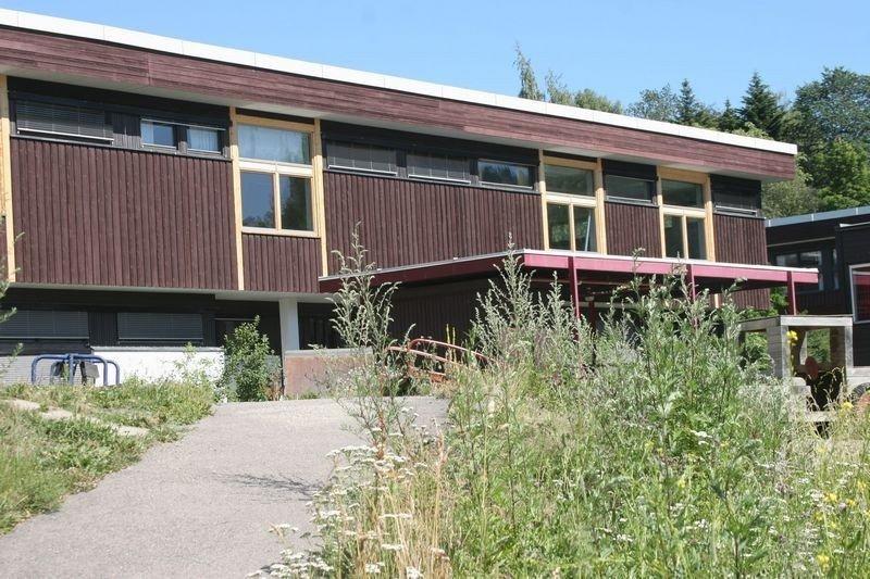 Haukåsen skole