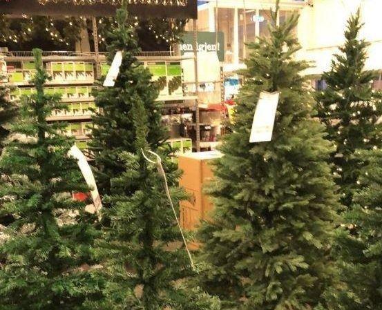 Alle nye Her har de allerede begynt å selge juletrær LC-68