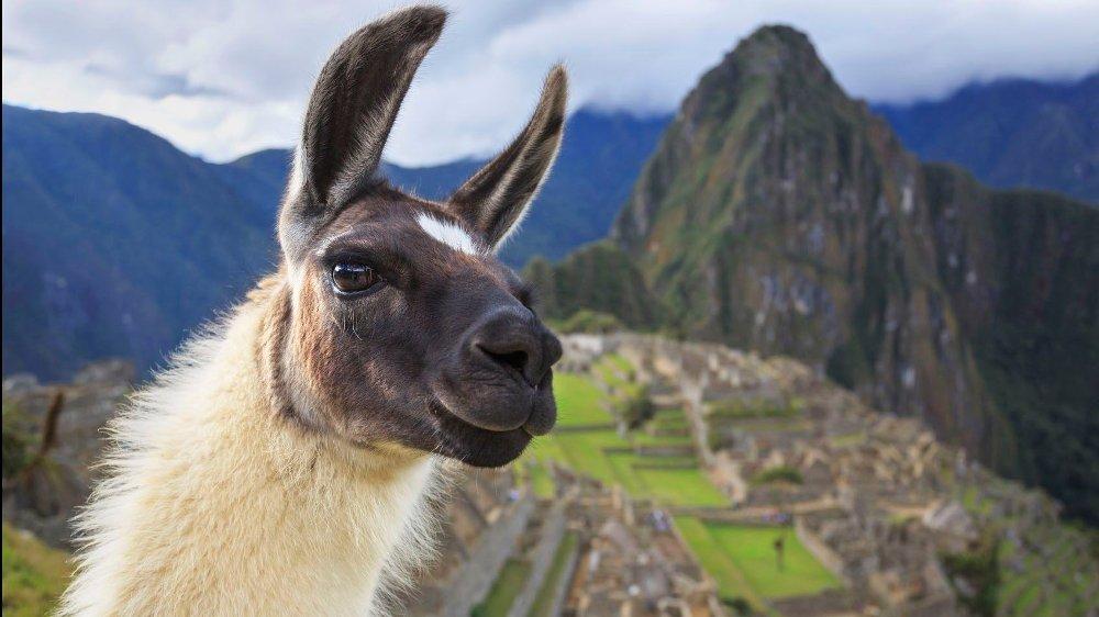 Klikk på bildet for å forstørre. Machu Picchu, Peru, UNESCO World Heritage Site. One of the New Seven Wonders of the World