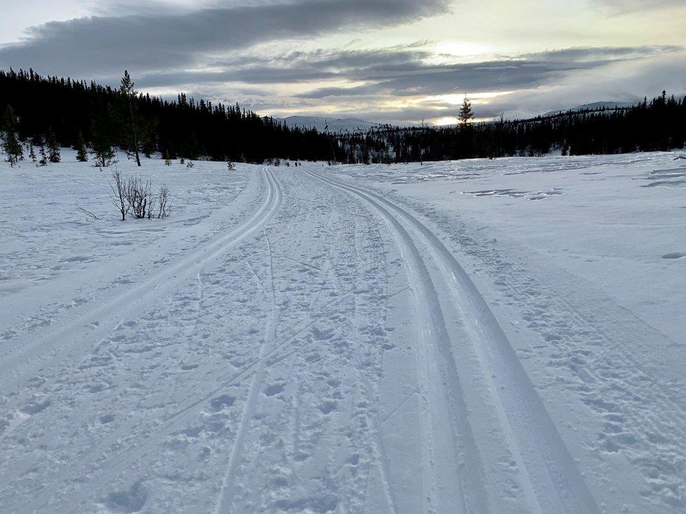 Klikk på bildet for å forstørre. Skiføre Nesbyen.