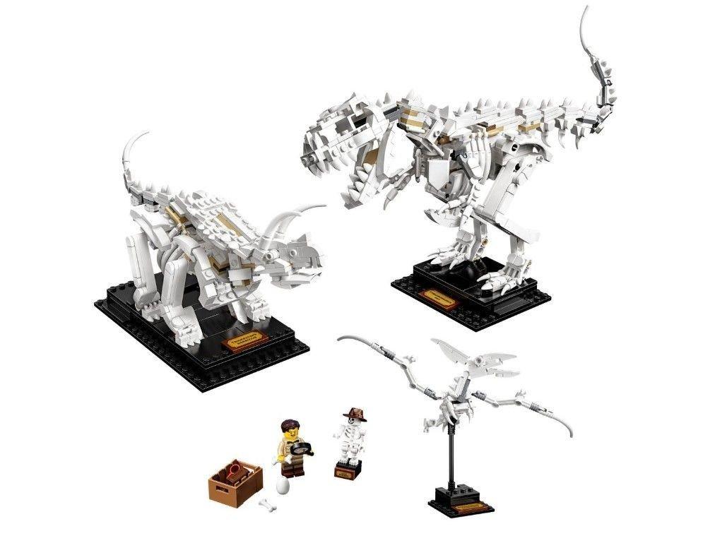 Klikk på bildet for å forstørre. Dinosaurfossiler