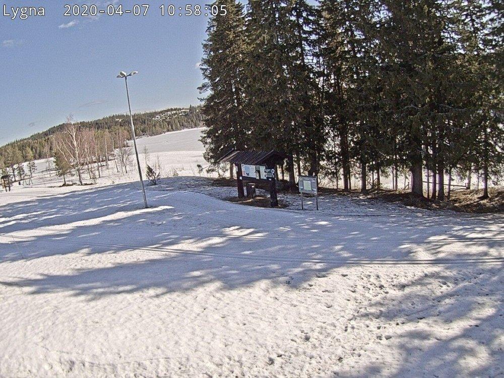 Klikk på bildet for å forstørre. Slik ser det ut på Lygna i Gran kommune tirsdag, der det er preparerte skiløyper.