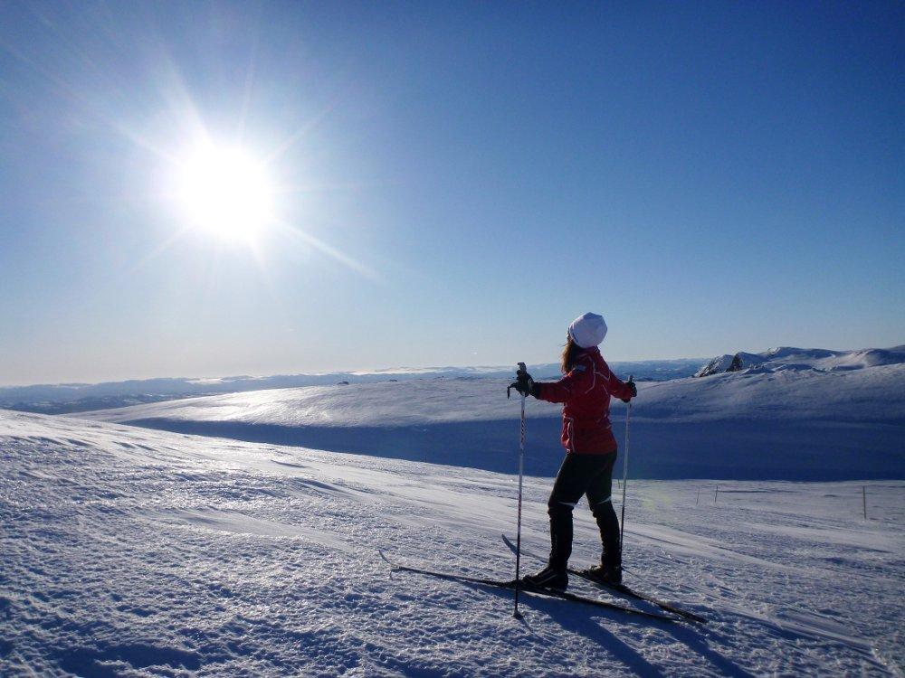 Klikk på bildet for å forstørre. Norefjell 20150314. Nydelig vintervær med en forsmak på påske sol og skyfri himmel nytes ved Høgevarde på Norefjell i Buskerud lørdag. Det fine været og skiføret fristet mange til en skitur i fjellet. NB! Modellklarert til redaksjonell bruk.