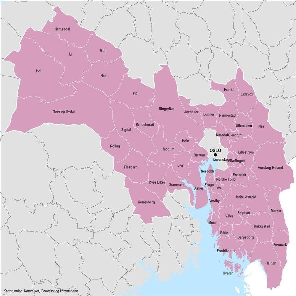 Klikk på bildet for å forstørre. FRA HALDEN TIL HEMSEDAL: Slik ser det nye Viken fylke ut med kommunene som er en del av storfylket fra 2020.