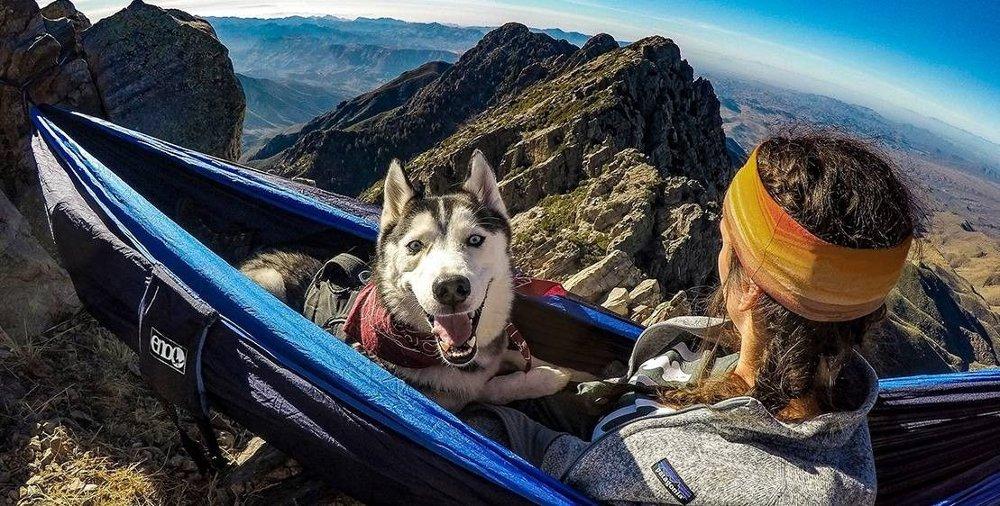 Klikk på bildet for å forstørre. ENO DoubleNest har plass til to - eller deg og en hund.