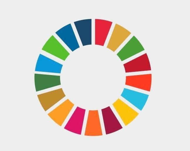 Klikk på bildet for å forstørre. Bilde av jakkemerket som symboliserer de 178 bærekraftsmålene, som å utrydde sult, fattigdom og sikre god helse for alle.