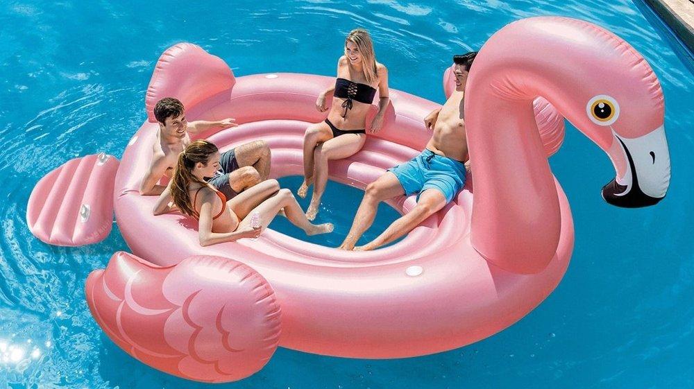 Klikk på bildet for å forstørre. flamingo