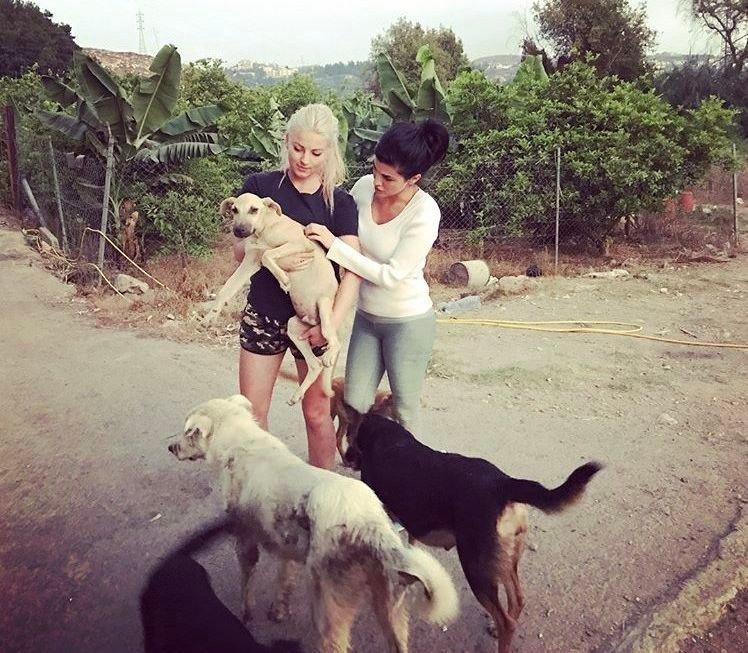 Klikk på bildet for å forstørre. Aylar og jeg undersøker en valp på Mashala Shelter i Libanon.