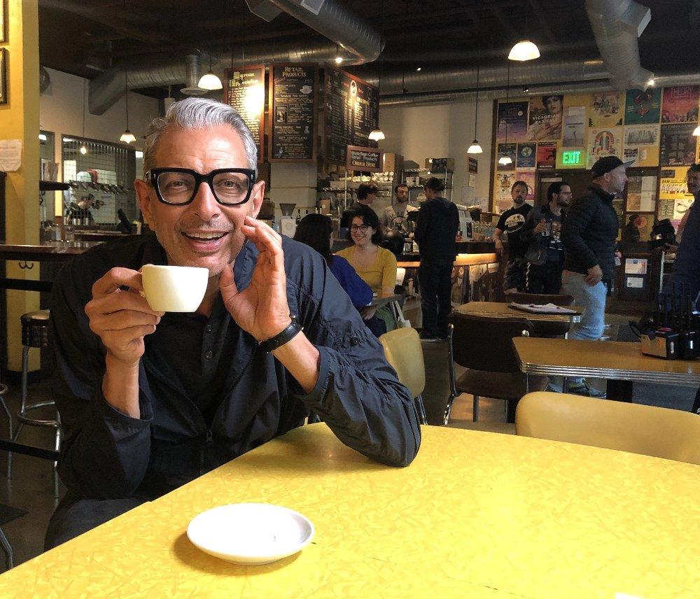 Klikk på bildet for å forstørre. Jeff Goldblum