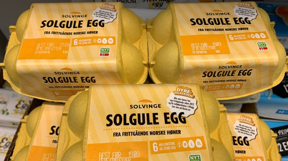 Klikk på bildet for å forstørre. Solvinge egg