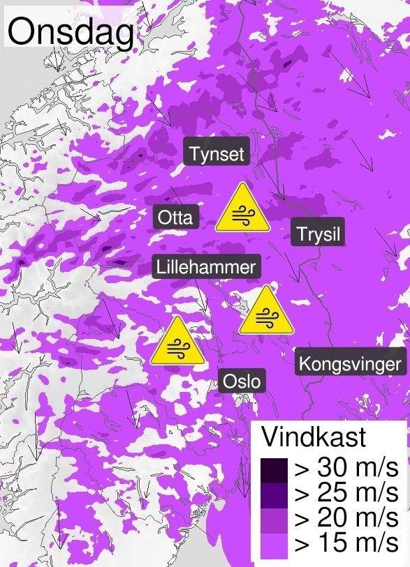 Klikk på bildet for å forstørre. GULT FAREVARSEL: Onsdag sendte Meteorologisk institutt ut farevarsel for kraftige vindkast på Østlandet.