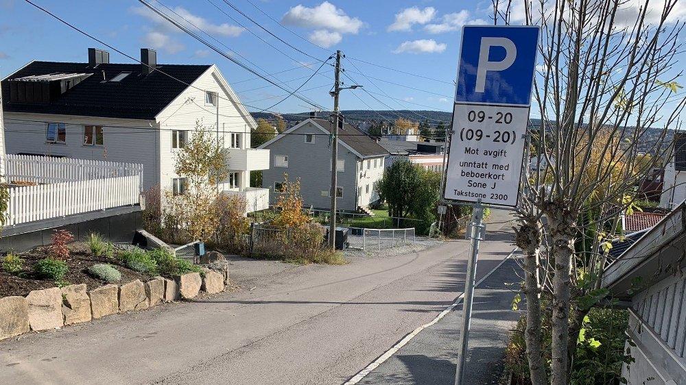 Klikk på bildet for å forstørre. LEDIG OVERALT: Da Nettavisen var innom en formiddag, var ikke en eneste av beboerparkeringsplassene i denne veien på Bjerke benyttet. Derimot sto mange biler parkert på de private tomtene i gata.