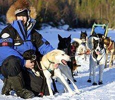 Hundekjører Robert Sørlie på treningstur på Øyangen i i Hurdal før han reiste til Alaska og Iditarod.