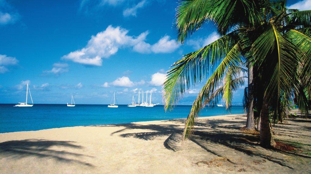 Nevis er en av Karibias virkelige dykkeparadiser.