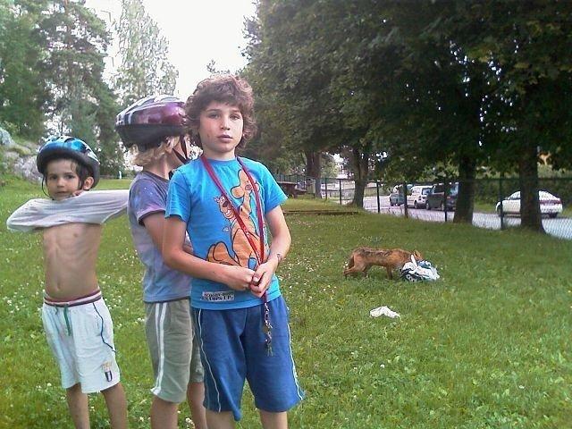 Bøler-barna Luka og Jovan Vujovic og Henrik Mevold kom svært tett innpå reven som sist uke besøkte Bølerbakken.