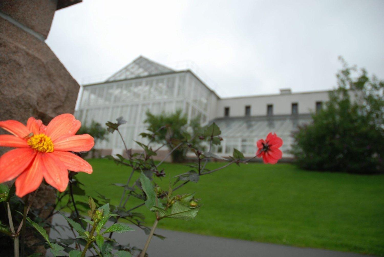 Botanisk hage åpner som normalt igjen tirsdag 21. mai. Denne uken har hagen vært stengt seks timer mer enn normalt per dag, etter store problemer med menneskeavføring i parken.