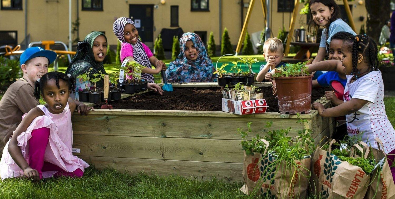 Fornøyd med forrige ukes planting: Barn i gården: Isudin ,Aksel, Aisha, Luna, Mateo, Sihem, Mulri, Sabrina, Salma og Ibtusam. FOTO: LOUISE VAD