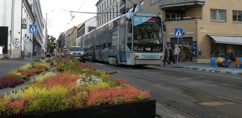 To rapporter viser at både fremkommeligheten og trafikksikkerheten har økt betraktelig i Thereses gate, etter fjerning av parkeringsplasser.