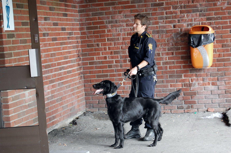 Politiet skal avholde flere aksjoner på skoler i byen. Her fra aksjon på Hellerud videregående skole, Nando og hundefører Torill Borøchstein.