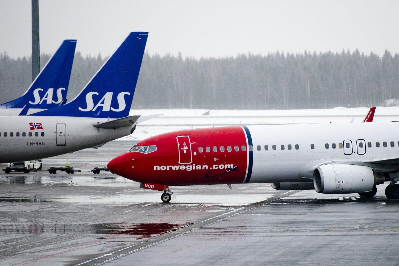 SAS øker sin andel av jobbreisende fra 47 til 50 prosent, mens Norwegians andel faller fra 36 til 29 prosent.