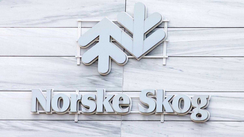 En ikke navngitt investor har lagt inn ordre på kjøp av opptil 8,4 prosent av Norske Skog.