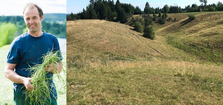 KRISE: Bildet til høyre viser beitemarka til Hans Arild Grøndahl (bildet) på gården Grøndalen i Auli i Akershus. - Nå er alt tørt, det finnes ikke noe grønt igjen, sier Grøndahl.