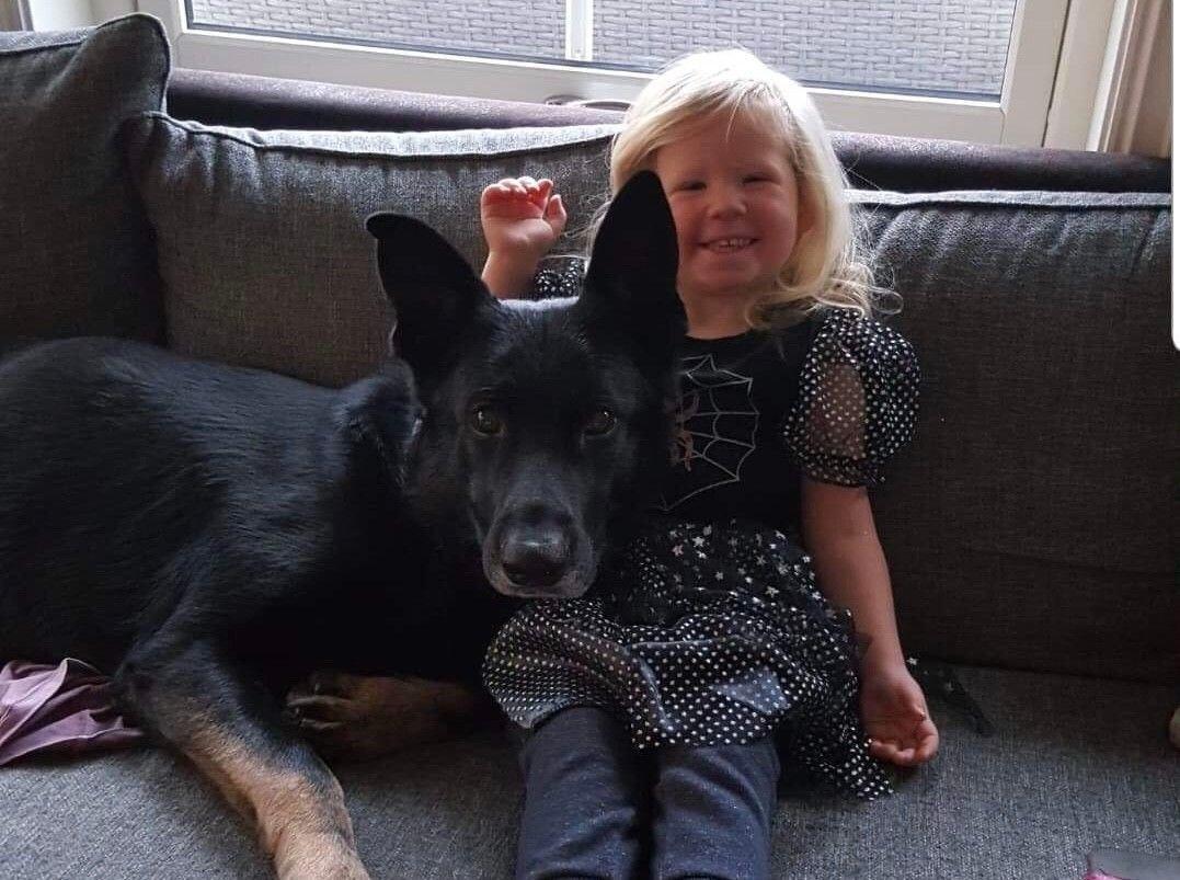 Nike (5) er en lydig tjenestehund som aldri har vist aggressive tendenser, men anses likevel som en farlig hund. Her sammen med familiens datter.